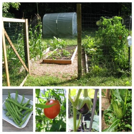 The Cullinan Garden